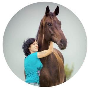 Ihr Übersetzer für den Pferdesport
